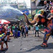 Songkran elephant